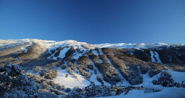 Thredbo-sparkling-after-fresh-snow-1000x667