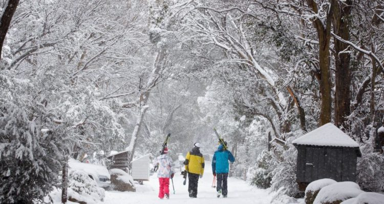 that-fresh-snow-feeling-in-Thredbo-1000x667